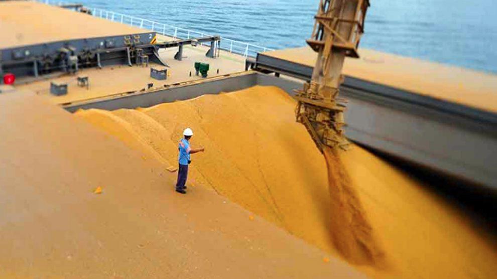 Resultado de imagem para exportacao de soja