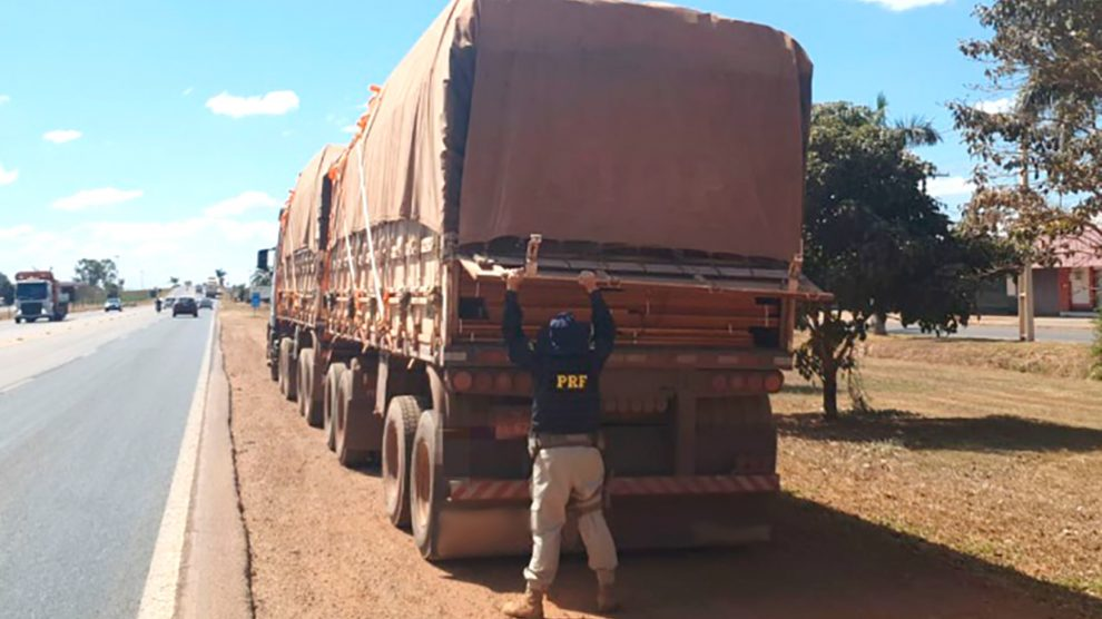 53m3 of illegal wood seized in Sorriso